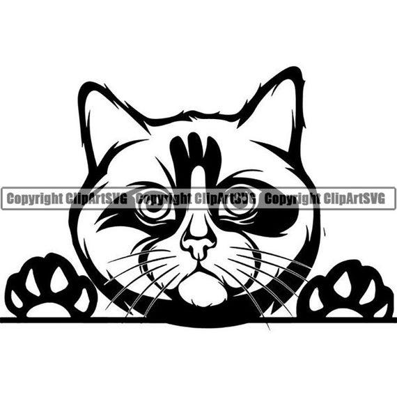 Ragdoll Cat Peeking Decal