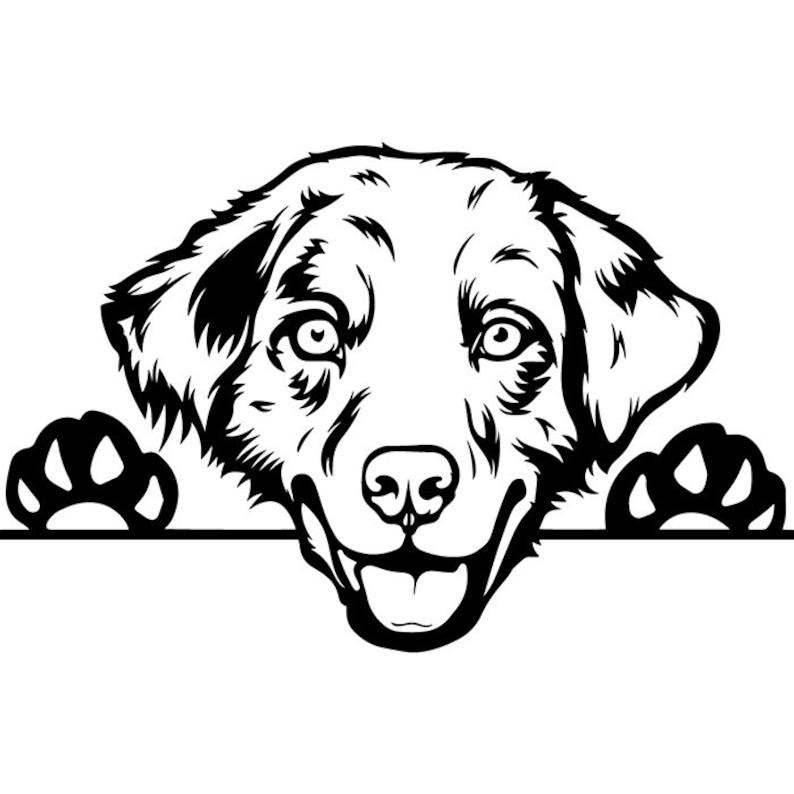 Military Dog Harness Step Through