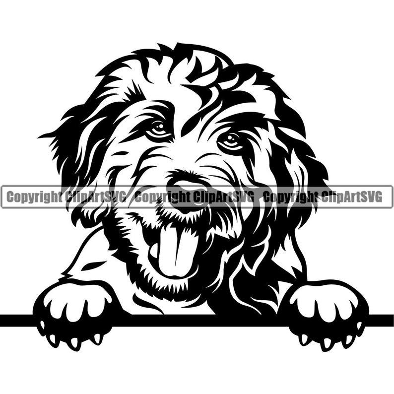 Goldendoodle Dog Breed Peeking Peek-A-Boo Puppy Pup Pet Purebred Pedigree Golden Retriever Poodle Logo SVG PNG Clipart Vector Cut Cutting photo