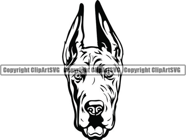 Great Dane 2 Smiling Big Dog Breed Pedigree Canine Purebred K 9 Pet Hound Animal Svg Png Clipart Vector Cricut Cut Cutting Download File