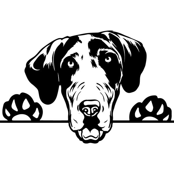 Great Dane 4 Peeking Big Dog Breed Pedigree Canine Purebred K 9 Pet Hound Animal Svg Png Clipart Vector Cricut Cut Cutting Download File