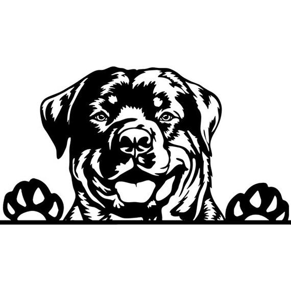 Dog Breeder Website: What Content Should I Put On It?  Dog Breeding Logos