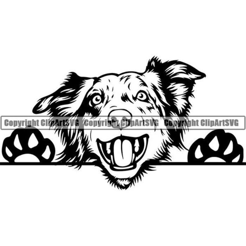Australian Shepherd #12 Peeking Aussie Dog Breed K9 Animal Pet Hound Puppy Pedigree Purebred Logo.SVG .PNG Clipart Vector Cricut Cut Cutting photo