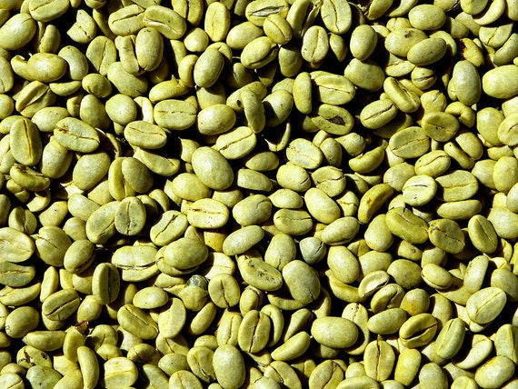 Organic Green Coffee Oil Unrefined Cold Pressed Anti Aging Etsy