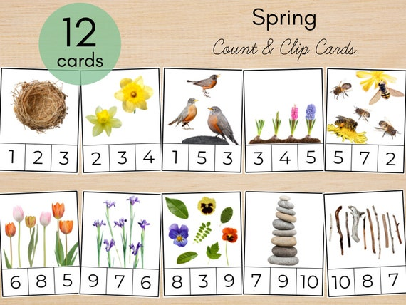 Spring Nature Counting Number Clip Cards 0-10  Toddler