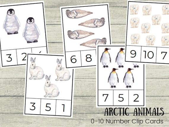 Arctic Animals 0-10 Number Clip Cards  Toddler Preschool
