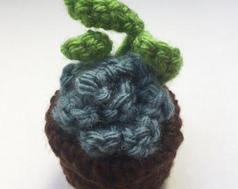 Crochet Blue Star Succulent