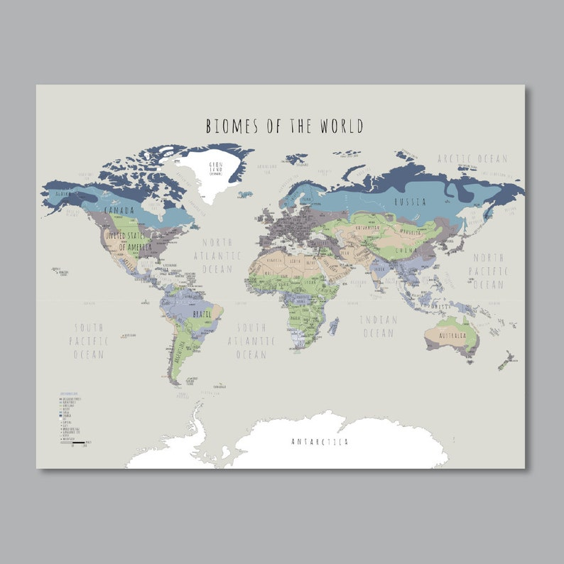 Biomes of the world PRINTABLE World map with countries wall | Etsy on