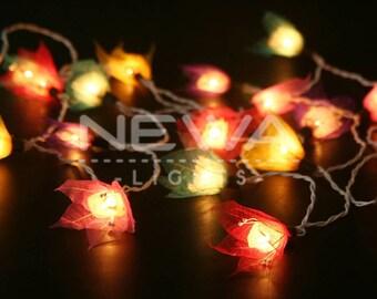 20 Rainbow Colorful Dry Leaf Flower Lights String Lights Fairy Lights  Garland Christmas Lights Gifts Bedroom Wall Hanging Vintage Home Decor