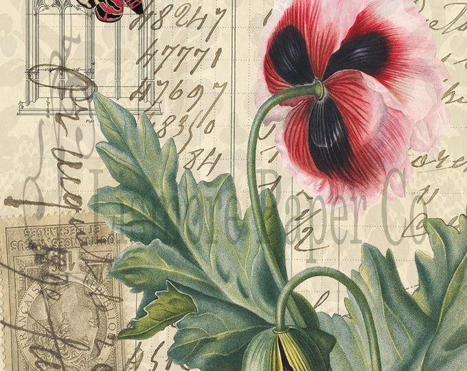 Instant Download Paper, Poppy Print, Botanical Decor, Cottage Decor, Digital Collage, Printable Art, Instant Download, Vintage Paper Collage