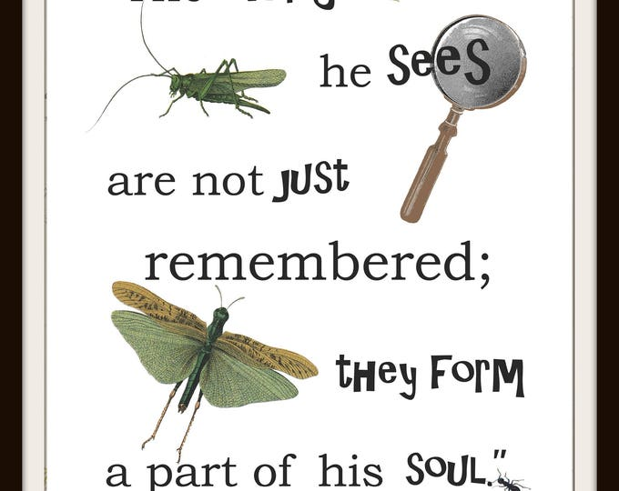 Instant download, Nature Inspiration, Maria Montessori quote, child room, bugs, nature printable, nursery decor, home decor, outdoor, set