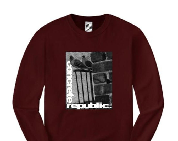 Mens long sleeve urban fashion tee, 'The Usual Suspects' NYC pigeon graphic (size Sm-4XL)