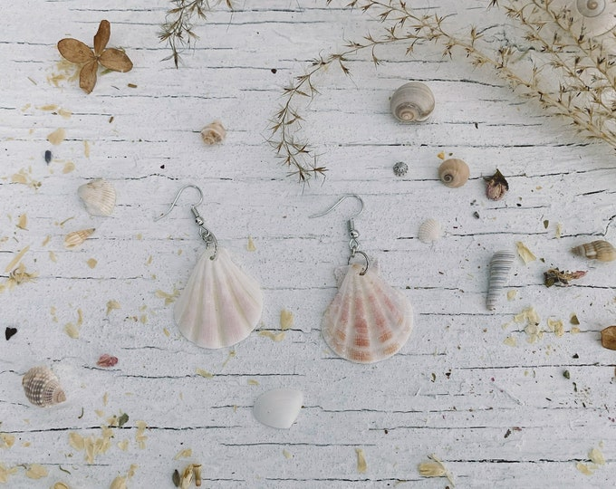 Unique Seashell Earrings