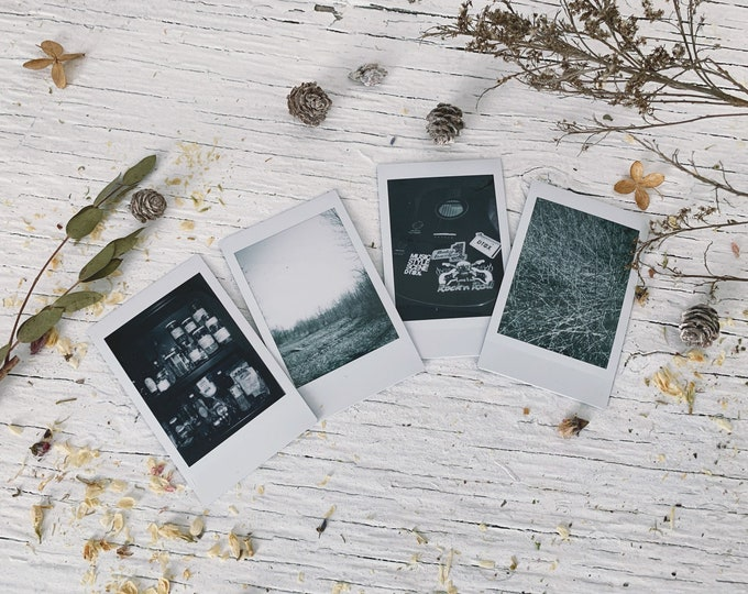 Assorted Polaroid set