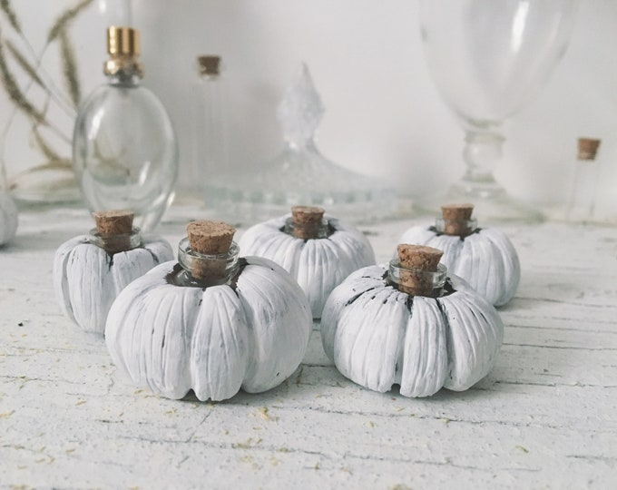 Herbalist Pumpkin set