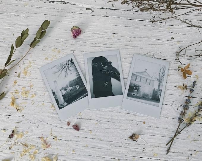 Assorted Polaroid set