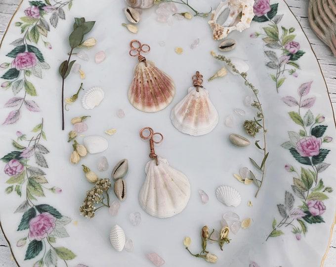 3 Seashell Spoons