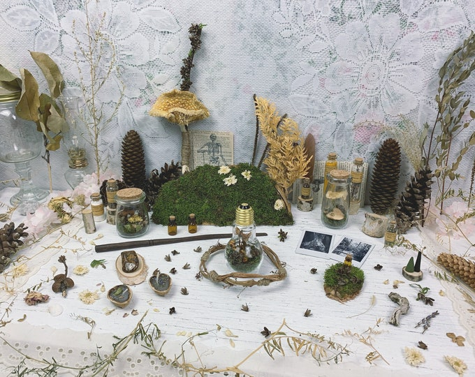 Apothecary Witch Altar // Mushroom Edition