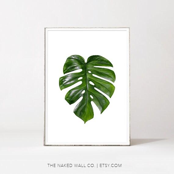 Palmier imprimer feuille feuille de monstera feuille de etsy - Dessin de palmier ...