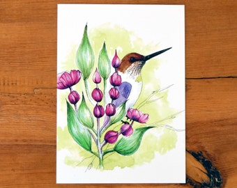 Hummingbird Art, Garden Art, Hummingbird in the Garden Art Print, 5x7 Hummingbird Art, Hummingbird Illustration, Animal Art Print