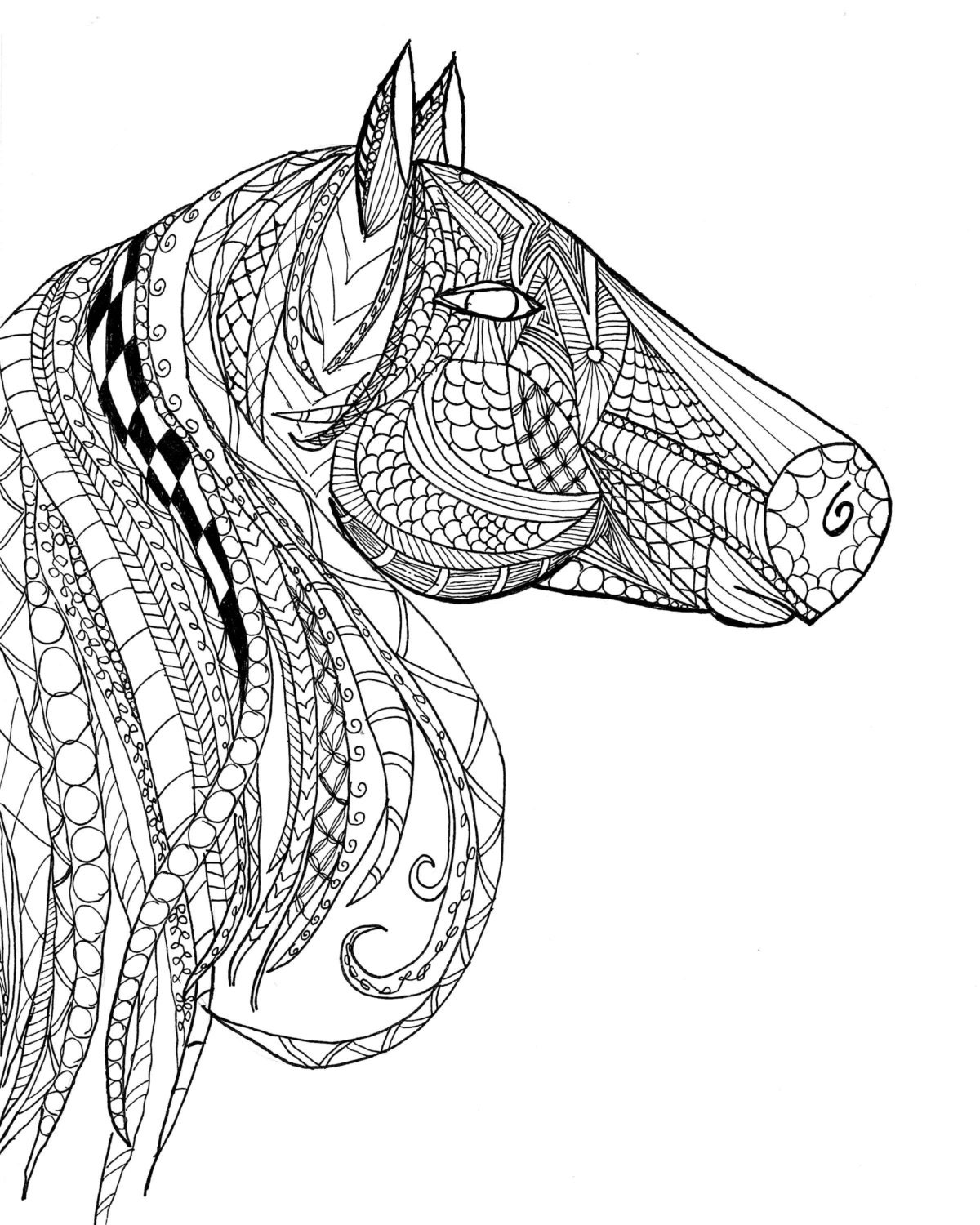 Horse Head Zentangle Adult Coloring Page Etsy