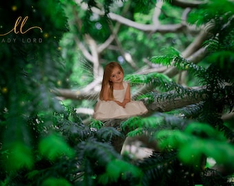 Fairy on a Tree Digital Background or Stock Photo for composite Fairy Photography