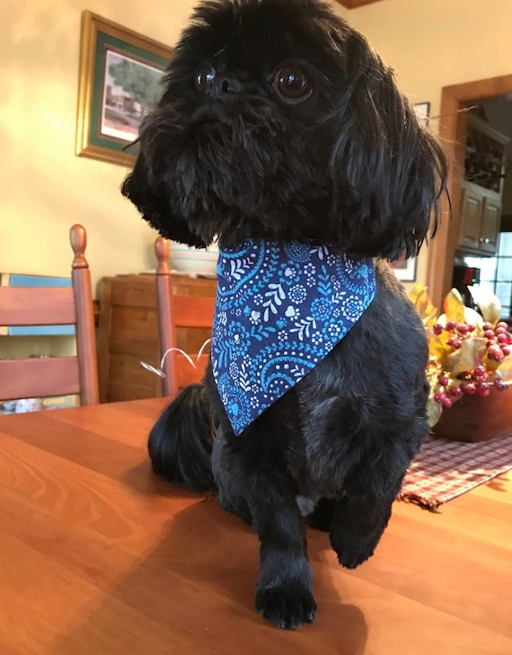 Blue Paisley Dog Bandana, Slide on Collar Bandana, Pet Accessory, Blue Paisley Dog Print