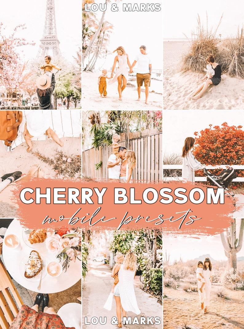 Mobile Lightroom Preset / Cherry Blossom Everyday Mobile image 0