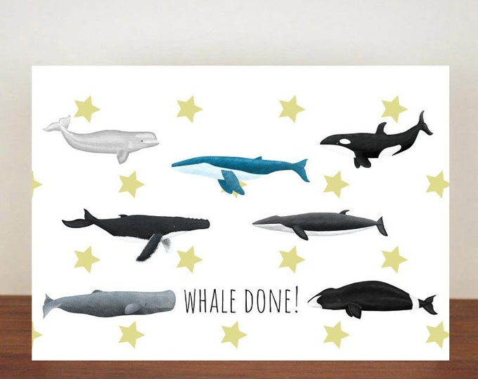Whale Done, Congratulations, Whale, Whale Card, Animal Card, Well Done Card, New Job Card, Achievement Card, Qualified, Humpback Whale