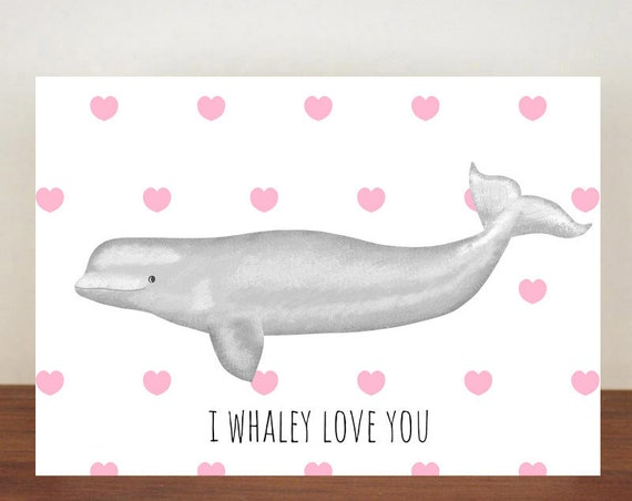 I Whaley Love You Anniversary Card, Beluga Whale, Hearts, Love, Valentines Card, Whale Card, Happy Valentines Day, Love Card, Anniversary