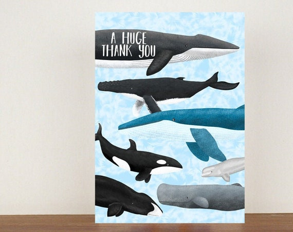 A Huge Thank You Card, Thank You Card, Animal Card, Thanks Card, Greeting Card, Orca, Orca Card, Whale, Whale Card, Beluga Whale, Blue Whale