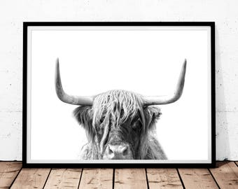 Highland cow print | Etsy
