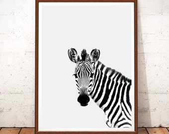 Zebra Print, Zebra Prints, Zebra Printable Art, Zebra Photography, Safari  Nursery Art, Safari, Zebra Art, Zebra Wall Art, Zebra Black White
