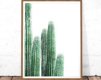 Cactus Art, Cactus Wall Print, Botanical Print, Cactus Poster, Printable Art, Cactus Photo, Cactus Wall Art, Botanical Poster, Digital Print
