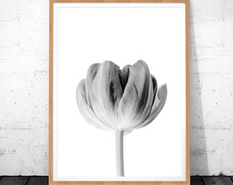 Flower Print, Black and White Home Decor, Tulip Print, Instant Download Printable Art, Monochrome Art, Floral Print, Flower Poster, Wall Art