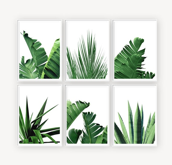Tropical Leaves Set Of 6 Prints Botanicals Prints Banana Etsy Today i'm sharing two rad line art tropical leaves printables to help bring summer vibes into your earlier this summer, i shared these two free tropical leaf and hand lettered phrase printables over on. tropical leaves set of 6 prints botanicals prints banana leaf printable wall art palm leaf print set of 6 digital prints wall art set