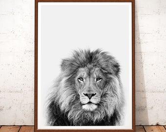 Lion Print, Lion Printable, Safari Nursery, Digital Download, Lion Animal Print, Lion Wall Art, Black and White, Lion Photo, Nursery Decor