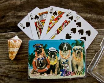 Lifes A Beach Hawaii Dogs Collectible Hawaiian Playing Cards Full Deck Citysights Hawaiian Dogs Lei Day May Day Hawaii Nei Cool Dogs Islands