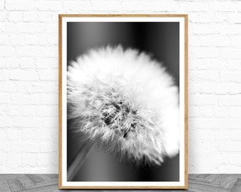 Dandelion, Black and White, Downloadable Print, Dandelion Wall Art, Gift For Her, Printable, Botanical Print, Living Room Art, Photography