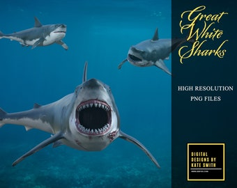 12 Great White Shark Overlays, Separate PNG Files, High Resolution, Instant Download.