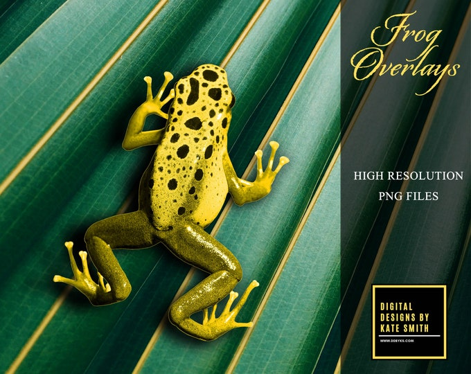 Frog Overlays, Separate PNG files, High Resolution, Instant Download, CUOK.