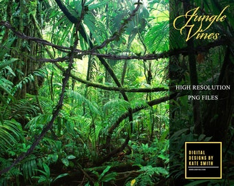 Jungle Vine Overlays, Separate PNG Files, High Resolution, Instant Download. CUOK.
