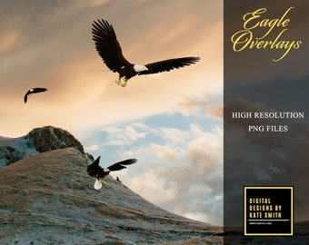 10 Eagle Overlays, Separate PNG Files, High Resolution 300ppi, Instant Download.
