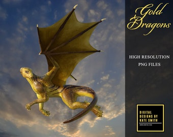 13 Golden Dragon Overlays, Separate PNG Files, High Resolution, Instant Download, Buy 3 get 1 free, CUOK.