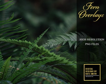 Assorted Fern Overlays, Separate PNG Files, High Resolution, Instant Download, CUOK.