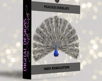 7 Peacock Overlays, Separate PNG Files, High Resolution, Instant Download.