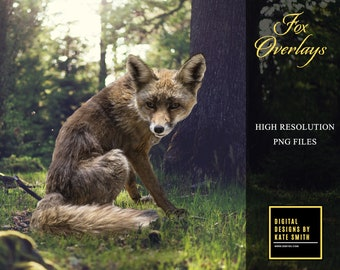 Fox Overlays, Separate PNG Files, High Resolution, Instant Download. CUOK.