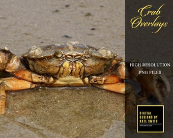 Crab Overlays, Separate Png Files with Transparent Backing, Instant Download, 300ppi.
