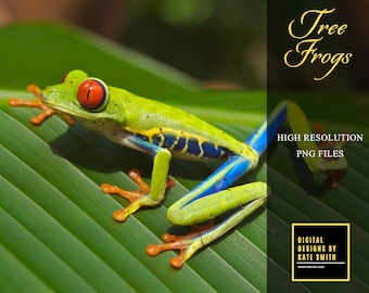 25 Tree Frog Overlays, Separate PNG Files, High Resolution, Instant Download.