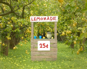 Lemonade Stand Overlay, High Resolution PNG File, Instant Download, Buy 3 get 1 free, CUOK.